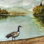 Oxtongue Goose
